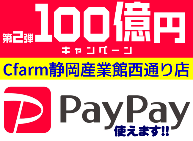 「PayPay 第2弾100億円キャンペーン開催中!!」Cfarm静岡産業館西通り店でも「PayPay(ペイペイ)」でのお支払いができます!!