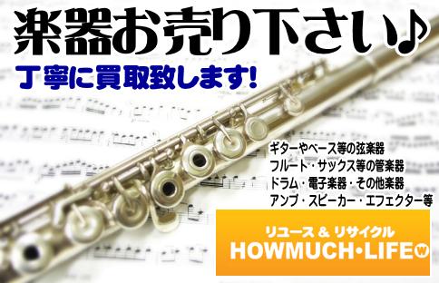 ギター・ベース・サックス・フルート等の弦楽器・管楽器等の楽器買取なら静岡市内のハウマッチライフ!